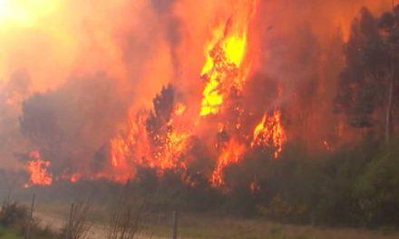 Galicia se va librando de grandes incendios forestales a diferencia de lo que está pasanado en otras regiones