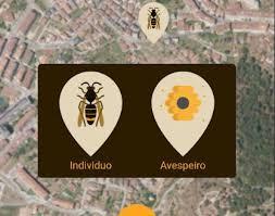 Nace «Velumap» una aplicación para conocer la extensión de la plaga de avispas velutinas