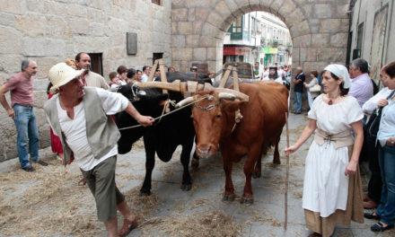 El covid también barre la Feira Franca