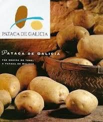 Comienza la recogida de la patata en A Limia
