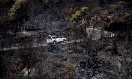 Más de 1.500 hectáreas ardieron por el incendio de Cualedro y Monterrei